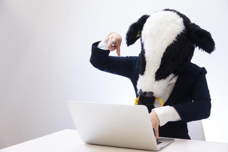 牛がパソコン
